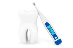 Extreme closeup tooth with thermometer Royalty Free Stock Photo