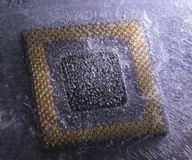 Extreme cooling-off. Processor frozen into the ice. There are beautiful ice structure Royalty Free Stock Image