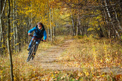 Extreme cyclist autumn Stock Photos