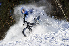 Extreme cyclist riding royalty free stock photo