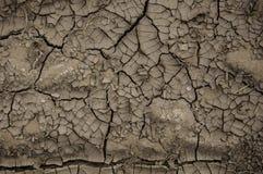Extreme Dürre lizenzfreies stockfoto