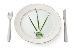 Extreme Diät Lizenzfreies Stockfoto
