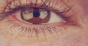 Extreme die macro van een bruin menselijk oog wordt geschoten stock video