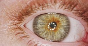 Extreme die macro van een bruin menselijk oog wordt geschoten stock videobeelden