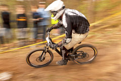 Extreme Downhill Racer Stock Images