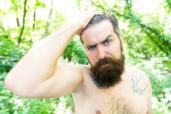 Extreme heat. Man thirsty sweaty hipster naked in forest. Summer heat. Bearded tattooed guy relax in nature hot summer. Day. Heat concept. Hipster wet skin and stock photo