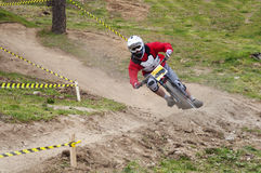 Extreme jump on a bike in forest Royalty Free Stock Images