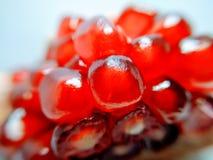 Extreme macro close up on pomegranate seeds royalty free stock image