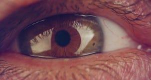 Extreme macro shot of a brown human eye stock footage