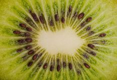 Extreme macro shot of a kiwi Stock Photography