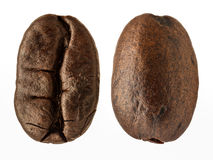 Extreme magnification - Coffee bean Stock Images