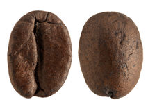 Extreme magnification - Coffee bean Stock Photo