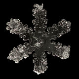 Extreme magnification - Real snowflake Royalty Free Stock Photos