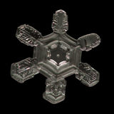 Extreme magnification - Real snowflake Stock Images