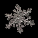 Extreme magnification - Real snowflake on black background Royalty Free Stock Image