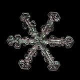 Extreme magnification - Real snowflake on black background Stock Image