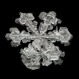 Extreme magnification - Real snowflake on black background Stock Photos