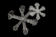 Extreme magnification - Real snowflake on black background Royalty Free Stock Photography