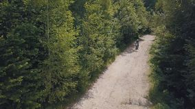 Extreme motorcyclist rides on road in the forest. Motocross. Motosport. Freedom. Stock footage of motorcycle. Aerial view stock footage