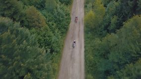 Extreme motorcyclists rides on road in the forest. Motocross. Motosport. Stock footage of motorcycle. Aerial view stock footage