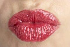 Extreme Nahaufnahme der Lippen der mittleren gealterten Frau Stockbild