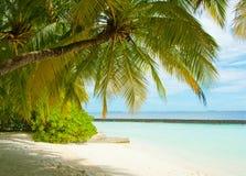 Extreme paradise Stock Images
