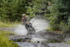 Extreme racing motorcycles on forest Royalty Free Stock Photography