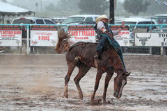 Extreme Rodeo. Bareback bronc cowboy sticking on his horse in extreme thunderstorm in a muddy arena during The Heat III: Bikini Barrel Race and Roughstock Royalty Free Stock Images