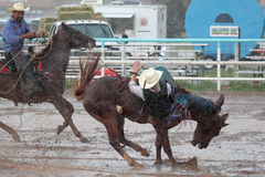 Extreme Rodeo. Bareback bronc cowboy falling off his horse in extreme thunderstorm in a muddy arena Stock Photos