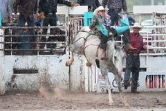 Extreme Rodeo. Bareback bronc cowboy on white horse in extreme thunderstorm in a muddy arena in The Heat III: Bikini Barrel Race and Roughstock Challenge rodeo stock photography