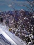 Extreme skier smashing snow coming down the mountain stock photo