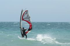 Windsurfer rides in the Black sea. Anapa, Russia royalty free stock photos