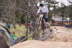 Extreme sprong op een fiets in bos Royalty-vrije Stock Fotografie