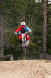 Extreme sprong op een fiets in bos Stock Foto's