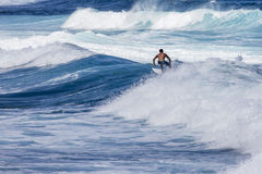 Extreme surfer riding giant ocean wave in Hawaii Stock Photography