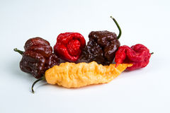 Extreme Team - Hottest Hot Peppers Stock Photo