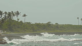 Extreme wave crushing coast, caribbean sea stock video