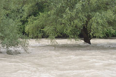 Extreme Weather and Flooding. River Flooding after Heavy Rain in Europe Stock Photo