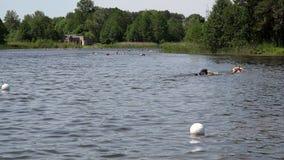 Extreme Wettbewerbsteilnehmer, die auf finfoam über Seewasser schwimmen stock footage