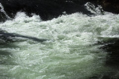 Extreme whitewater in the rapids below Upper Falls, Yellowstone. Stock Photos
