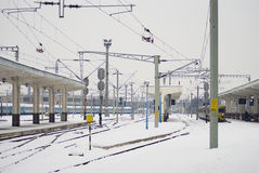 Extreme winter in Europe. Photo of this winter's extreme weather in Cluj Napoca, Romania. Photo taken on 05.02.2012 Royalty Free Stock Photo