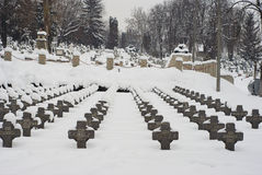 Extreme winter in Europe. Photo of this winter's extreme weather in Cluj Napoca, Romania. Photo taken on 05.02.2012 Stock Images