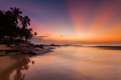 Extremely beautiful sunset under the coconut plams Royalty Free Stock Photo
