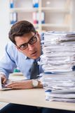 The extremely busy businessman working in office. Extremely busy businessman working in office Royalty Free Stock Photos