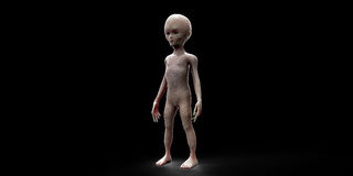 Extremely detailed and realistic high resolution 3D illustration of an extraterrestrial grey Alien. Shot with black background. Extremely detailed and realistic Stock Photos