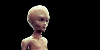 Extremely detailed and realistic high resolution 3D illustration of an extraterrestrial grey Alien. Shot on black background. Extremely detailed and realistic Stock Photography