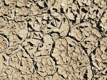 Extremely dry cracked clay of wheat field. Dusty ground with deep cracks Stock Image