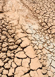 Extremely dry mud Stock Image