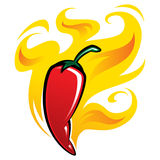 Extremely hot red chili pepper on fire. Extremely super hot red chilli paprika pepper surrounded by flames Royalty Free Stock Images