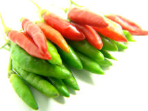 Rows of red and green chili Stock Images